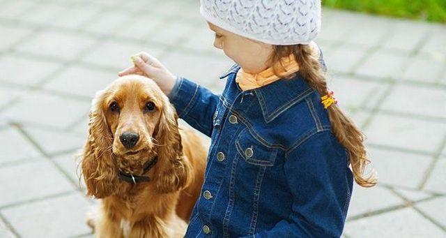 10 Mejores razas de perros para las familias