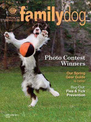 Mejores Revistas Dog 2016 - Revista perro de la familia