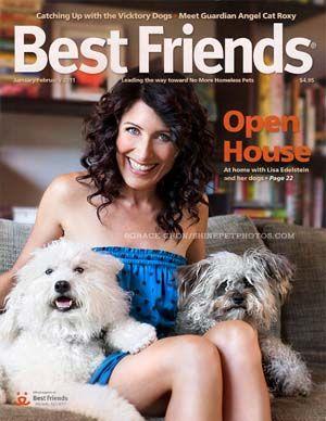 Mejores Revistas Dog 2016 - Mejores amigos de la revista