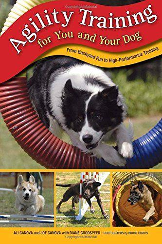 Entrenamiento de la agilidad para usted y su perro