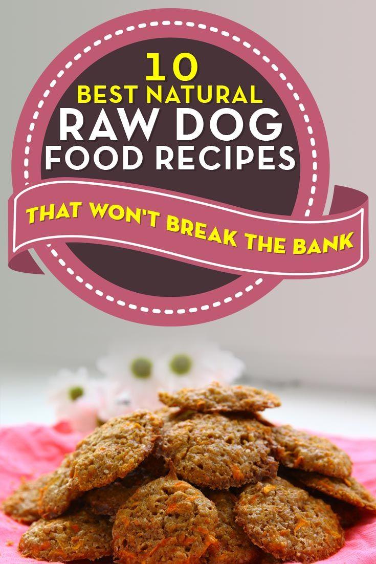 Las mejores recetas de comida para perros natural hecho en casa cruda para los perros