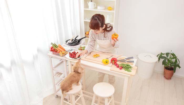 Mi mejor hechas en casa primas Recetas de comida para perros