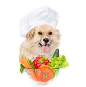 Mejores Recetas caseras para perros Alimentos Naturales