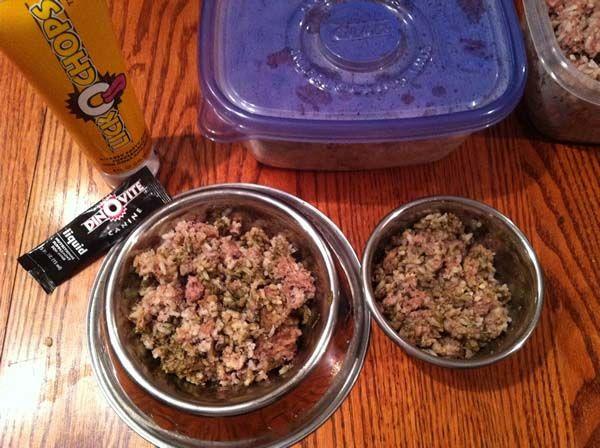 Receta casera de alimentos crudos 2 del perro