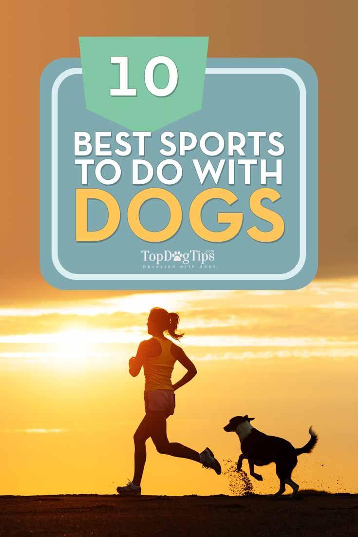 Deportes mejores que hacer con tu perro