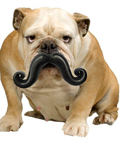 De perro de juguete para mascotas Stache Moody Humunga
