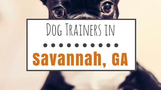 10 Los entrenadores de perros en savannah, ga vale la pena ver