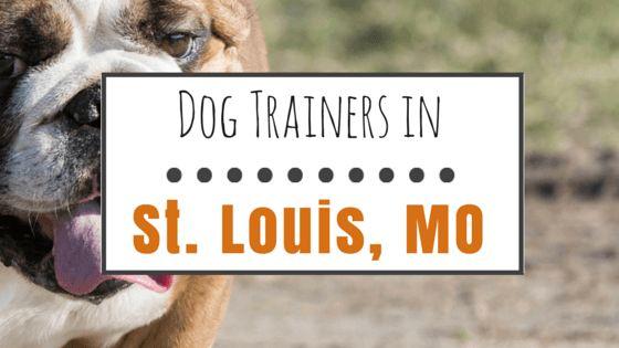 10 Entrenadores de perros populares de st. Louis, mo