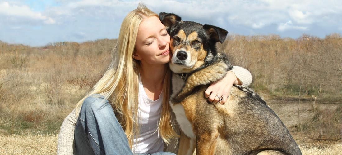 Trucos psicolГіgicos que pueden ayudar a entrenar a su perro