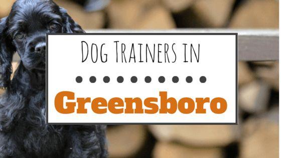 10 Entrenadores de perros maravillosos en greensboro, carolina del norte