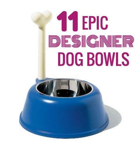 11 Tazones para perros de diseГ±o