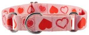 diversiГіn Valentine`s Gifts for Dogs