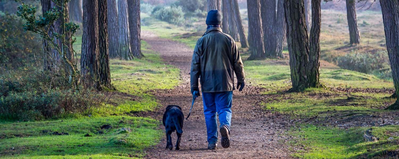 Los casos cientГficamente demostrado que los perros son mejores que los mГ©dicos