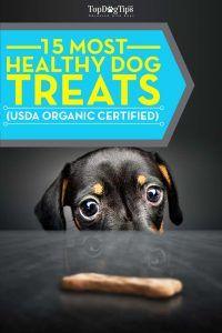 Las mejores golosinas saludables para los perros que son USDA Certified Organic