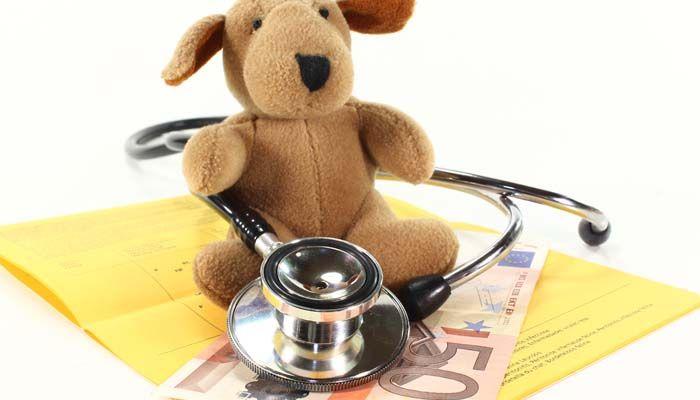 Los mejores proveedores de planes de seguro del animal doméstico para los perros