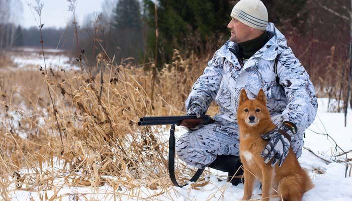 Cuando la seguridad de la caza con perros