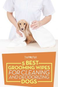 Top mejor perro Toallitas Grooming para la limpieza y desodorización Mascotas