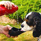 La botella de agua Mejor Perro