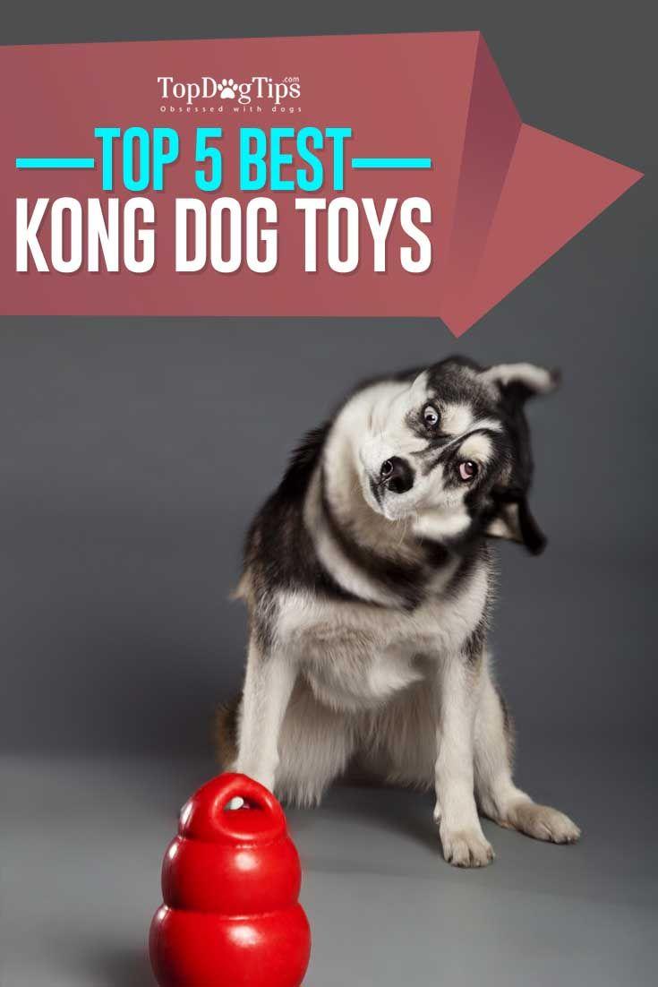 Top Mejor KONG para perros Juguetes para cachorros