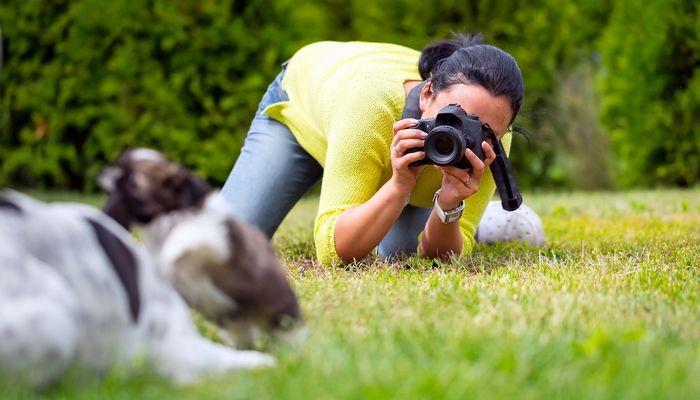 Mejores Empleos para dueГ±os de perros Apasionado