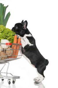 fuentes del perro supermercado para los nuevos cachorros