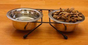 CerГЎmica perro plato de comida frente de acero inoxidable plato de comida de perro