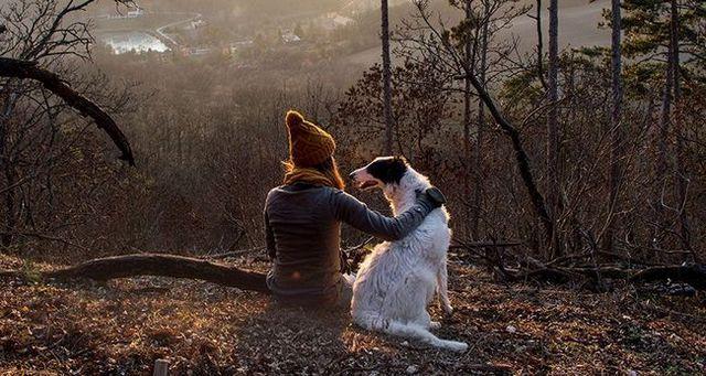 6 Consejos para disfrutar de actividades al aire libre con su perro