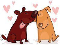 dos cachorros en lov