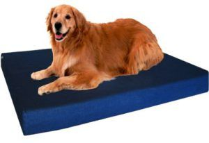 camas extra grandes para perros
