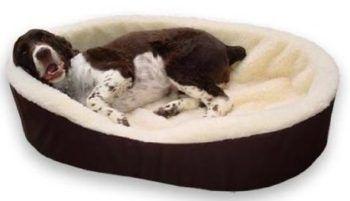 grandes camas ortopédicas perro supletorias