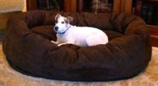 camas baratas del perro para los perros grandes