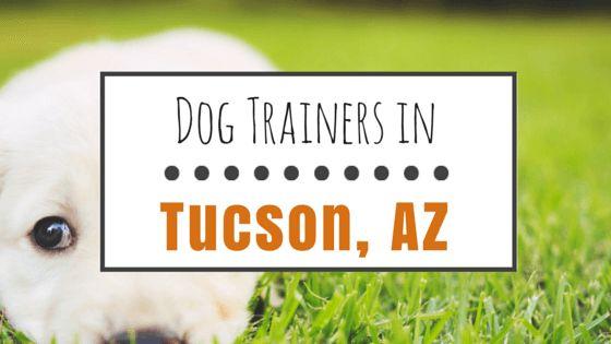 8 Entrenadores de perros más populares en tucson, az