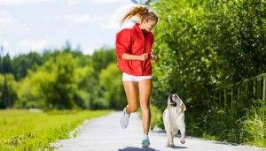 Pasear a su perro - Una guía para hacerlo de manera segura