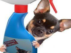 Mejor Perro del aerosol repelente