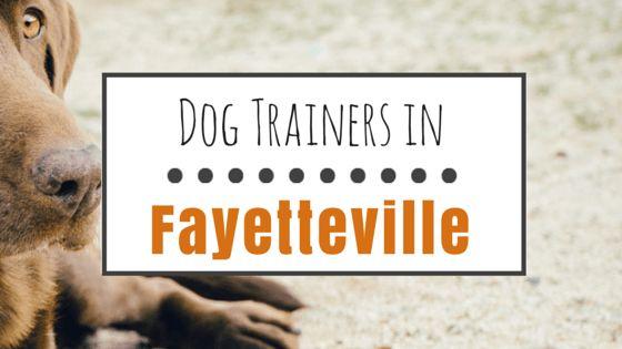 9 Entrenadores de perros positivos en fayetteville, nc