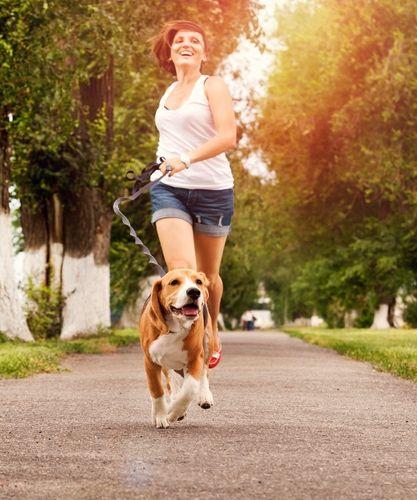 Construir su mascota`s endurance when running with dogs