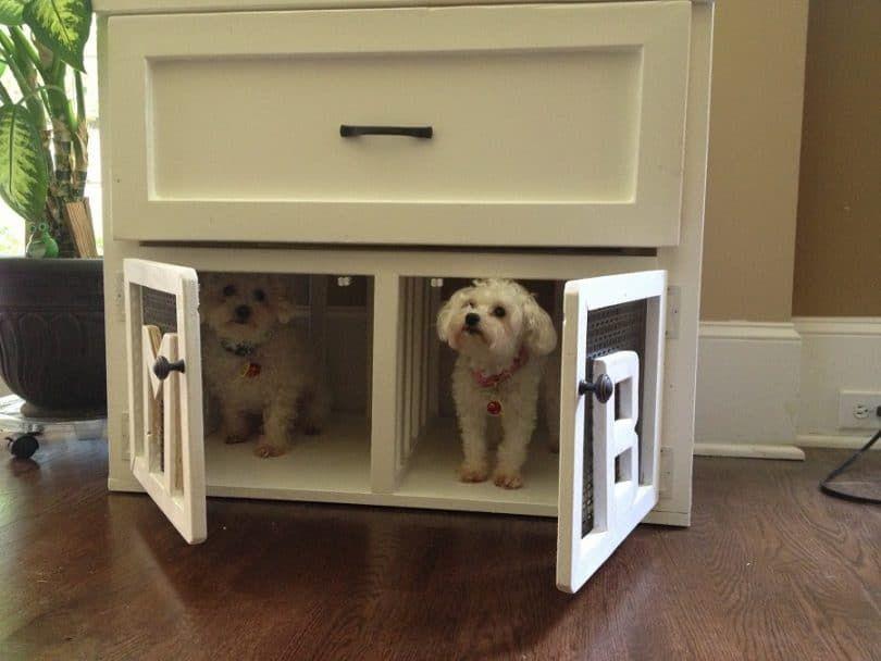 perrera perro de interior
