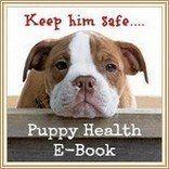 Descubre por qué necesita este manual de salud cachorro