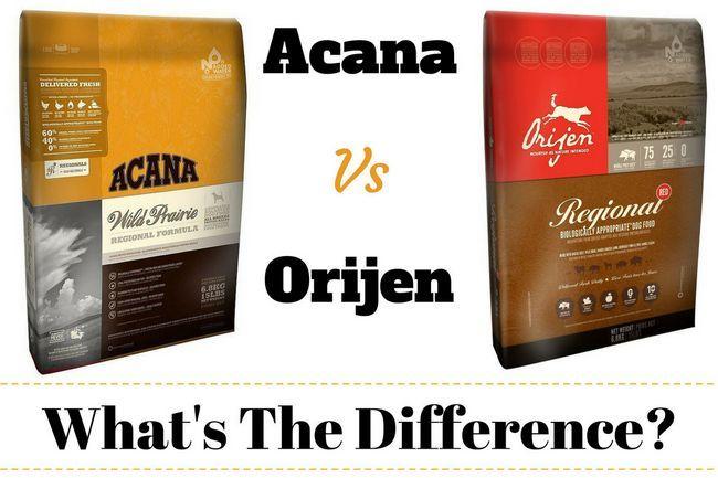 Acana orijen vs - ¿cuál es la diferencia? ¿Qué es mejor y por qué?