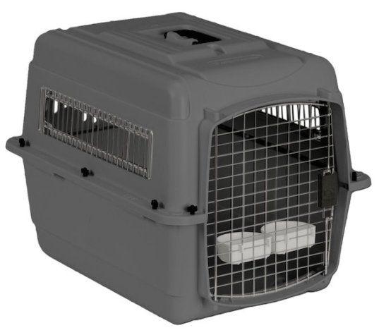 mejor caja de perro viajes