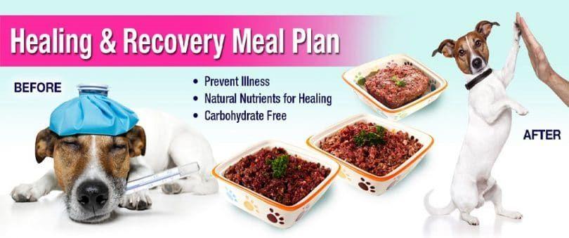 plan de dieta equilibrada