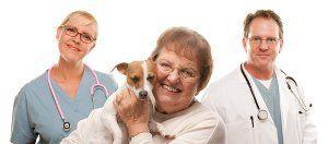 Consigue ayuda para elegir un veterinario
