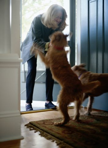 Pregunta al entrenador: ¿cómo le enseño a mi perro a no saltar sobre las personas?