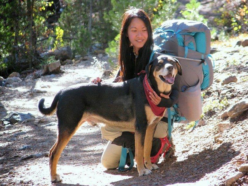 El ir de excursiГіn con el perro