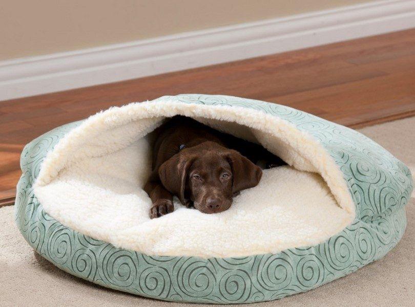 La cama para perros en forma de nido