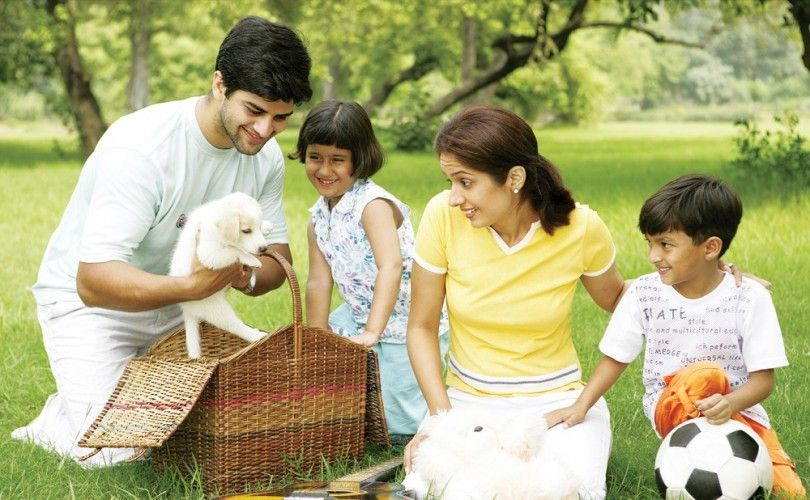 Las mejores razas de perros para las familias: las 4 selecciones para perros para la familia