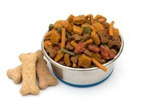 Las mejores ofertas de comida para perros en lГnea
