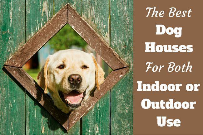 Las mejores casas de perro para el uso de interior y al aire libre