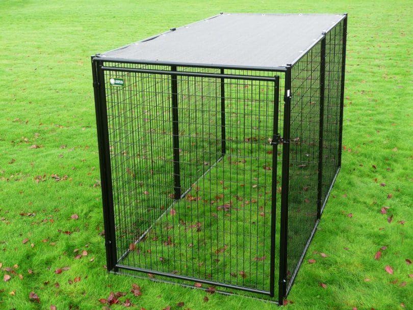 La perrera American Kennel Club de la parte alta de primera calidad en caja