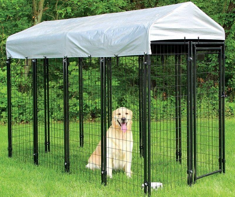 kit de criadero de perros mascota Sentinel